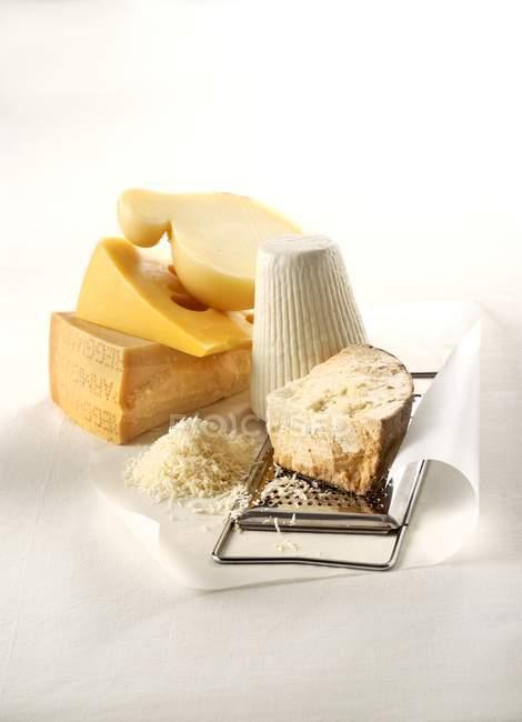 Cinq fromages durs grateable — Photo de stock