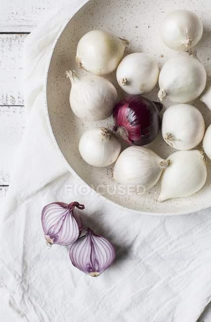 Красный и белый лук — стоковое фото