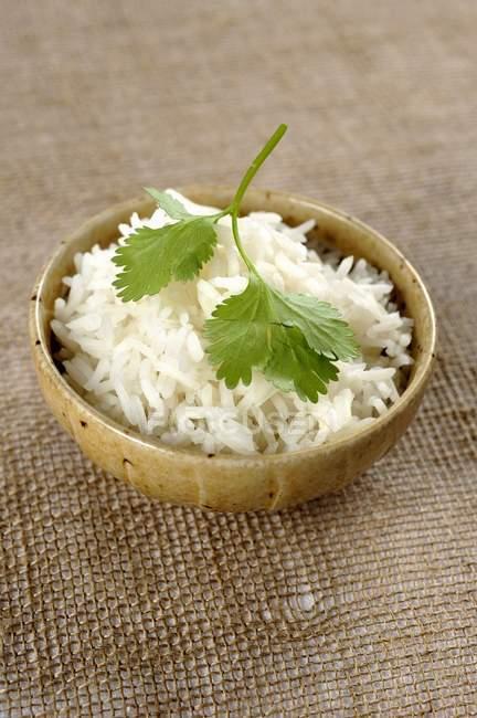 Висівки рису і коріандру листя — стокове фото