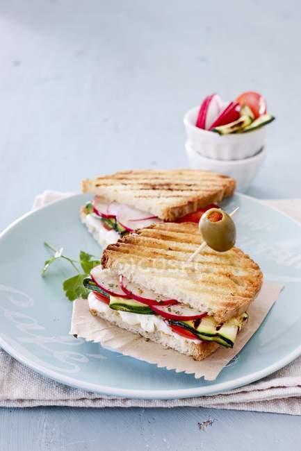 Veggie сендвіч на тарілку — стокове фото