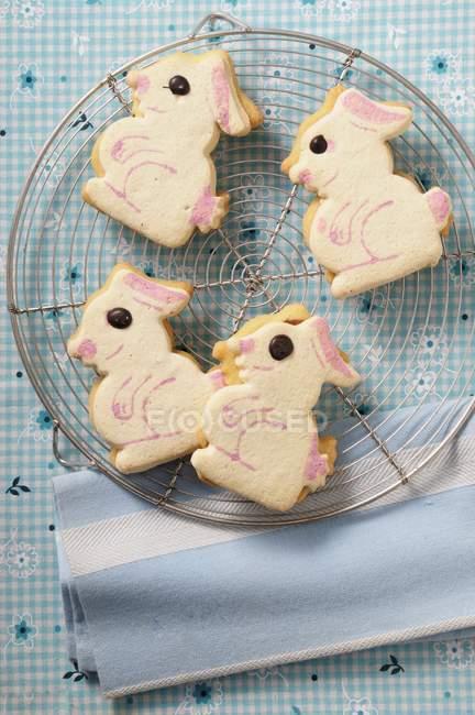 Пасха Банни печенье — стоковое фото