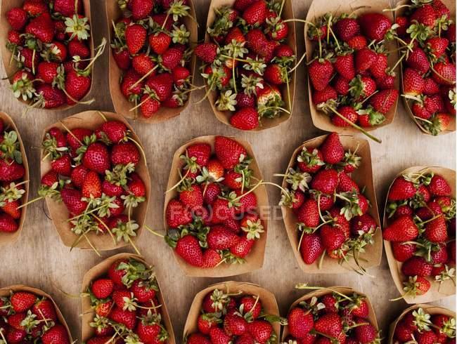 Punzones de cartón de fresas silvestres - foto de stock