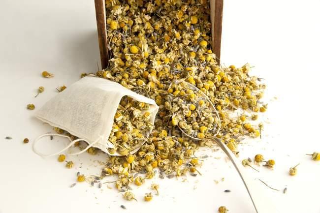 Bolsita de té con flores secas de manzanilla - foto de stock