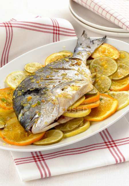 Seabream fish with citrus fruits — Stock Photo