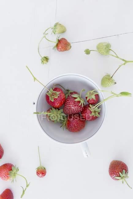 Fraises en tasse en porcelaine — Photo de stock