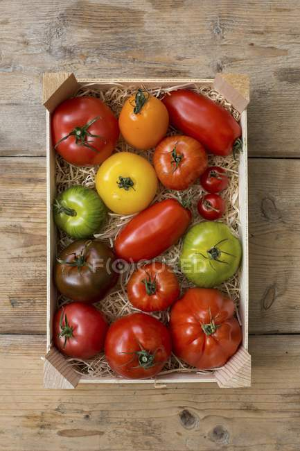 Crate of colourful tomatoes — Stock Photo
