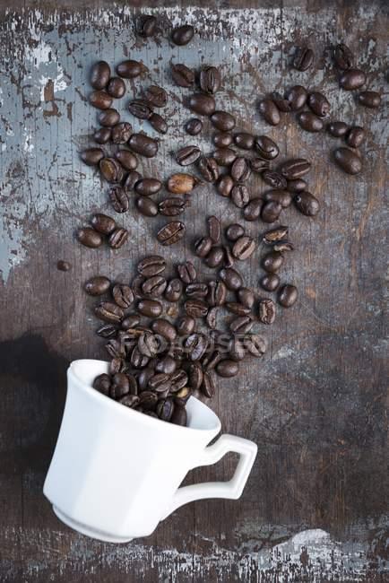 Granos de café dispersos - foto de stock