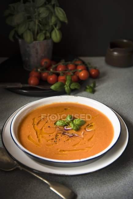 Томатный суп с базиликом и красным луком — стоковое фото