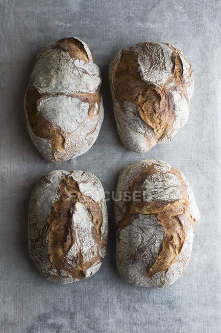 Four loaves of crusty bread — Stock Photo