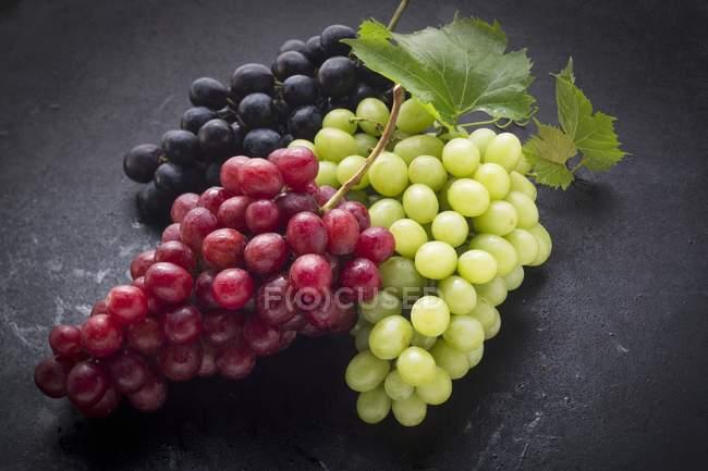 Чорний, червоний і зелений виноград — стокове фото
