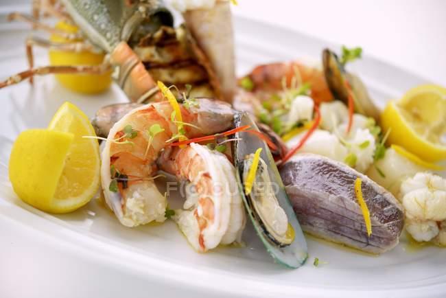 Vue du plateau de fruits de mer mélangés aux palourdes, crevettes et citron — Photo de stock