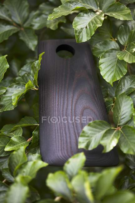 Closeup view of a wooden chopping board in a hedge — Stock Photo