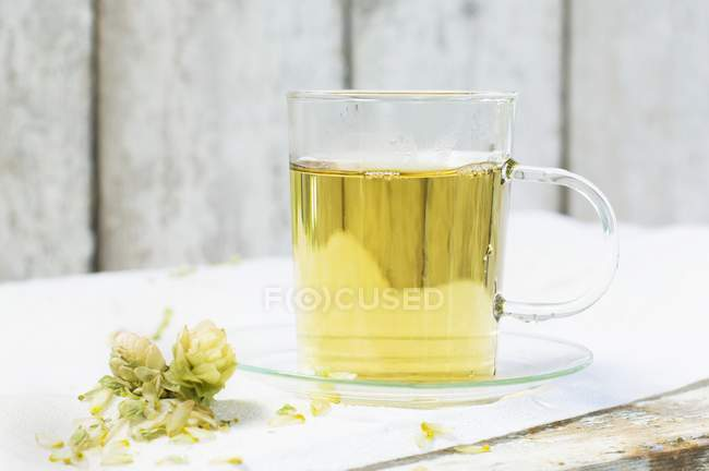 Hot tea in glass cup — Stock Photo