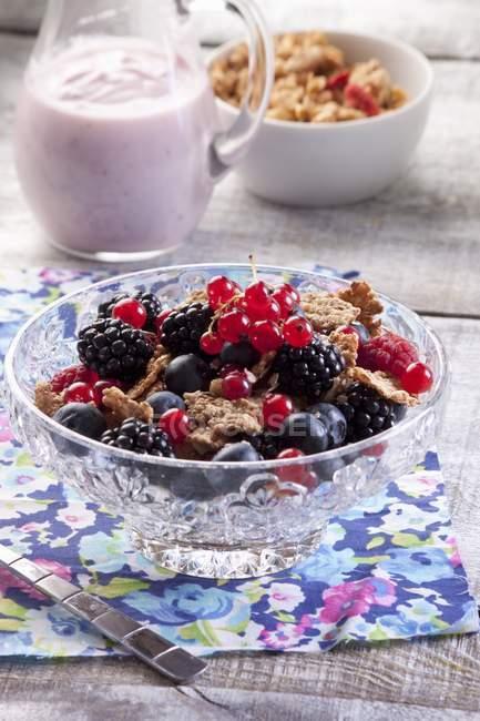 Каша со свежими ягодами — стоковое фото
