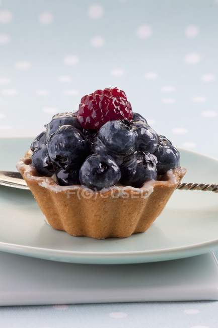 Blueberry tartlet decorated with raspberry — Stock Photo