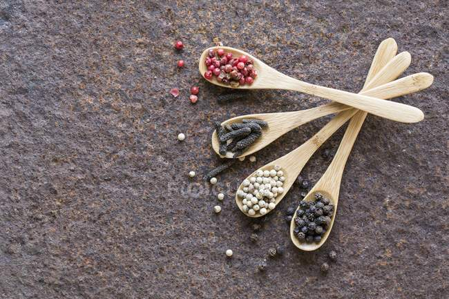 Getrocknete Paprika auf Holzlöffel — Stockfoto
