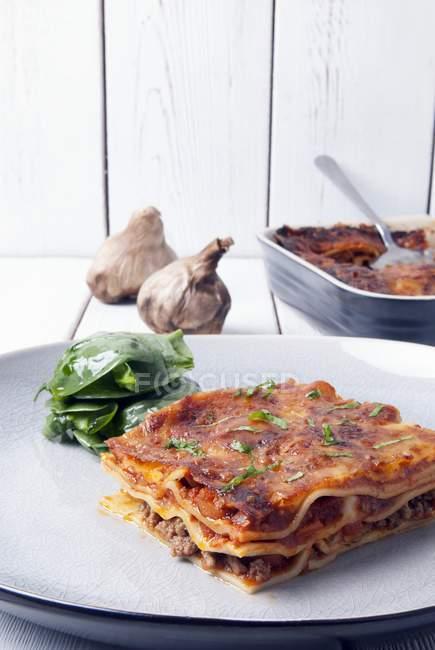 Lasagne fatte in casa con spinaci — Foto stock