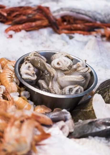 Calmar cru aux moules et crevettes — Photo de stock