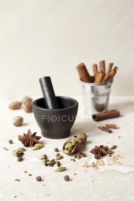 Крупним планом подання масала чай пряностей з маточкою і будівельний розчин — стокове фото