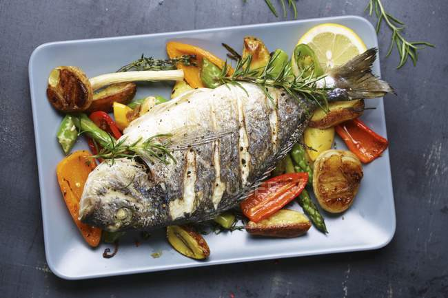 Gilt-head bream with rosemary on a bed of oven-roasted vegetables — Stock Photo