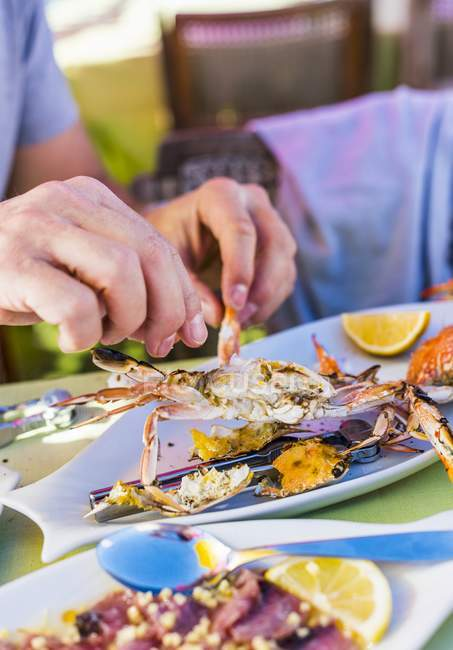 Cropped view of person using hands to eat crab — Stock Photo