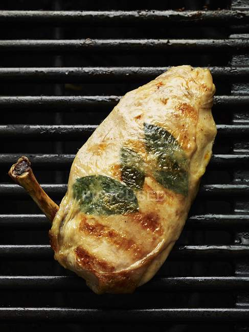 Grilled chicken breast with herbs — Stock Photo
