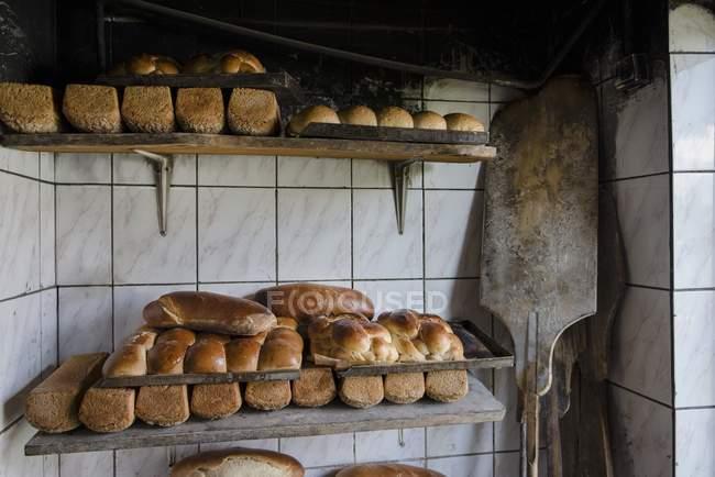 Сладкий хлеб из Южной Германии — стоковое фото