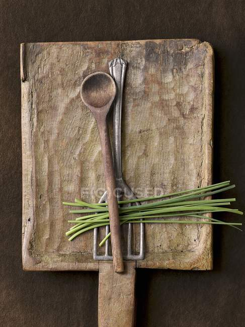 Spatola e cucchiaio con erba cipollina — Foto stock