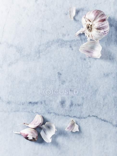 Knoblauch Zwiebel und Knoblauchzehen — Stockfoto