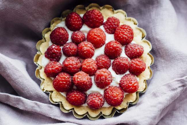 Невеликий малиновий торт — стокове фото