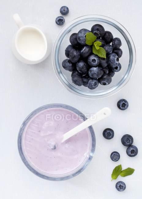 Frische Heidelbeeren und Beere Joghurt, — Stockfoto