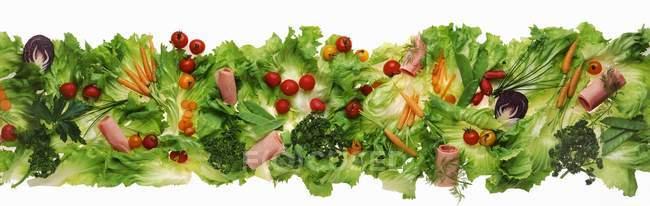 Frise de salade verte et de la viande — Photo de stock