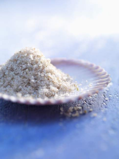 Морської солі в гребінець в шкаралупі — стокове фото