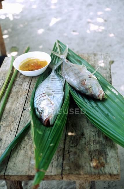 Pescado crudo y un adobo - foto de stock