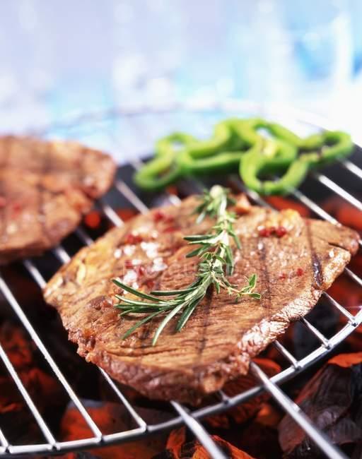 М'ясо на дроті стійку — стокове фото
