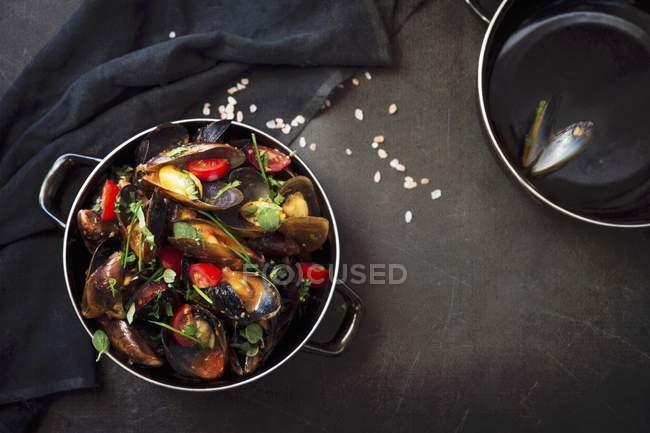 Cozze con pomodori in casseruola — Foto stock