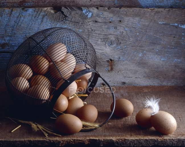 Panier d'œufs frais — Photo de stock