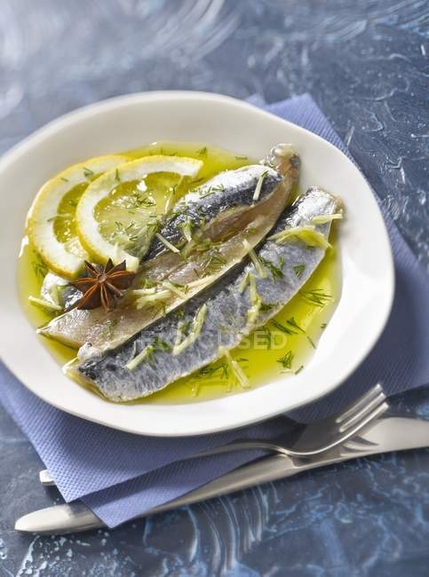 Raw sardine fillets in olive oil — Foto stock