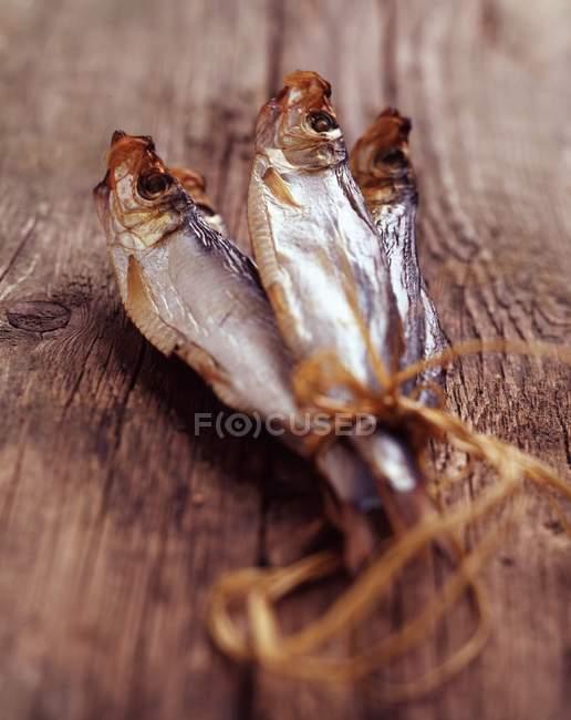 Smoked sprats tied with twine — Stock Photo