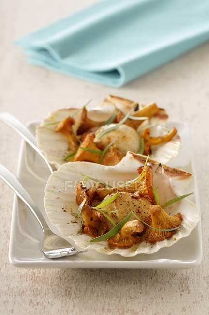 Capesante con finferli sul piatto — Foto stock