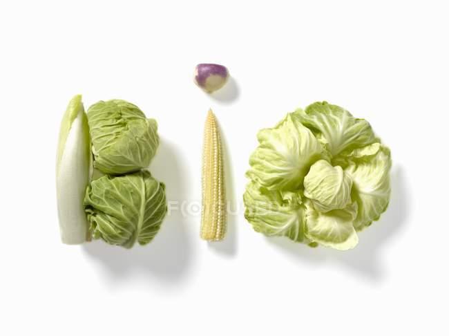 Wort mit Gemüse geschrieben — Stockfoto