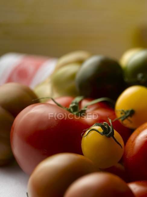 Fresh colorful tomatoes — Stock Photo