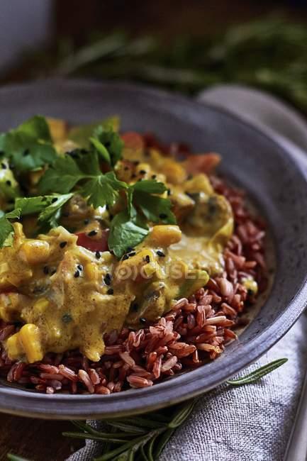 Vegane Tofu curry mit rotem Reis — Stockfoto