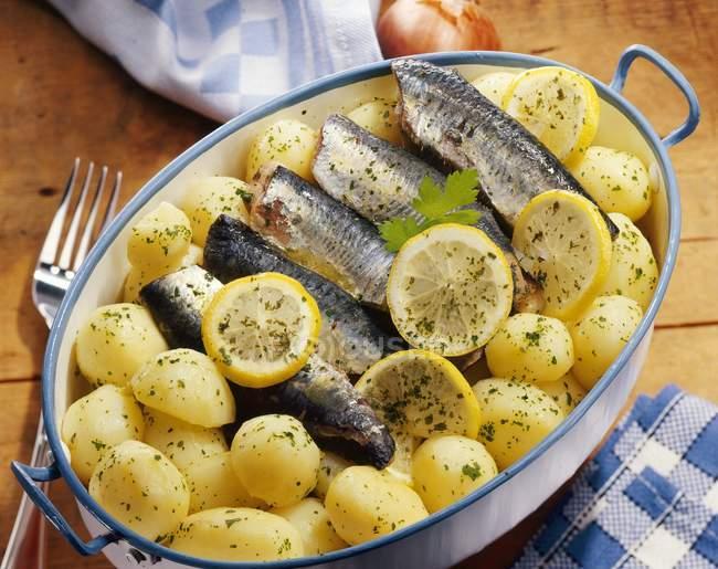 Жареные сардины в масле и картофеля — стоковое фото