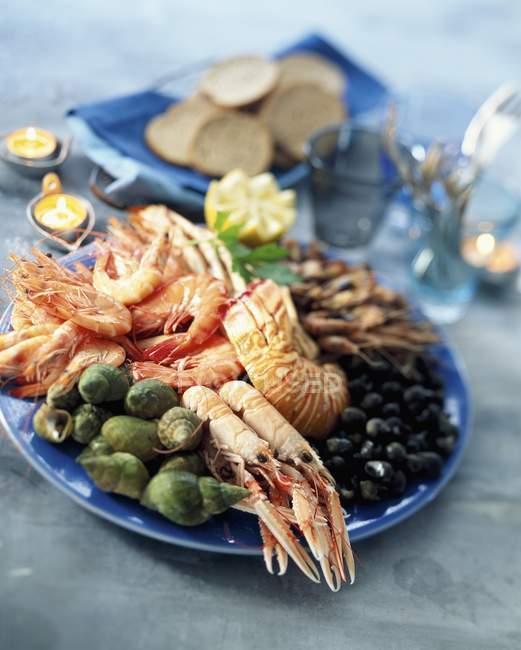Vue du plateau de fruits de mer avec des coquillages, des crevettes, des homards et des herbes — Photo de stock