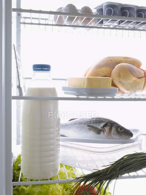 Frische Lebensmittel — Stockfoto