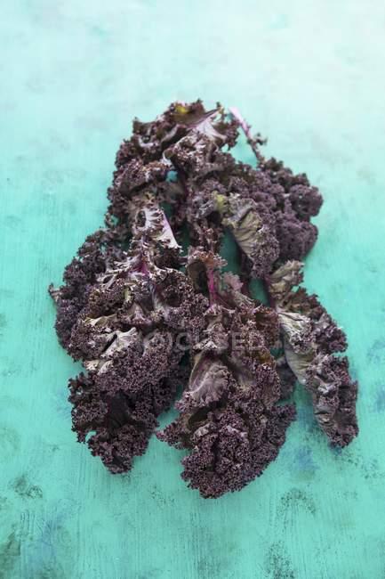 Col rizada púrpura fresca - foto de stock