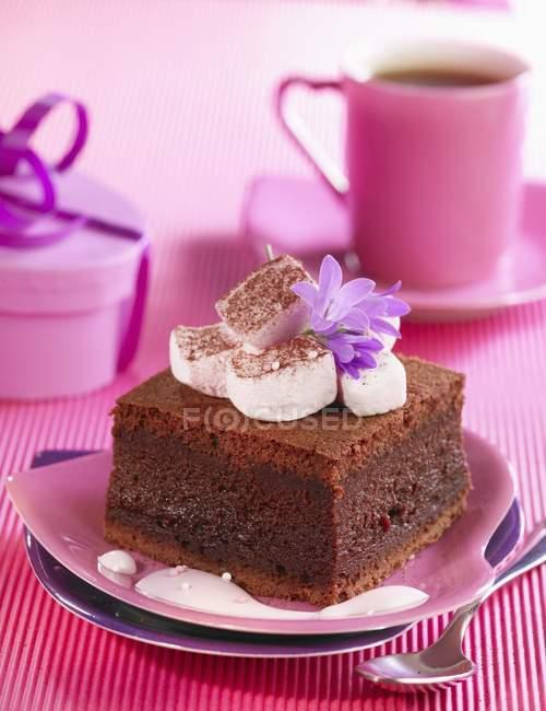 Шоколад і зефір торт — стокове фото