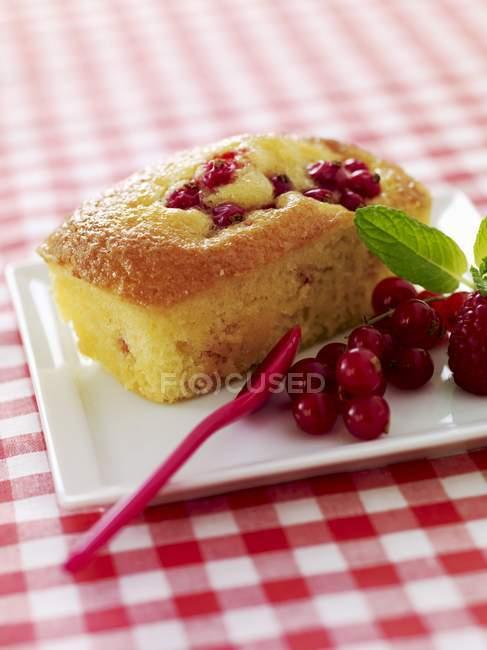Фруктовий торт міні — стокове фото