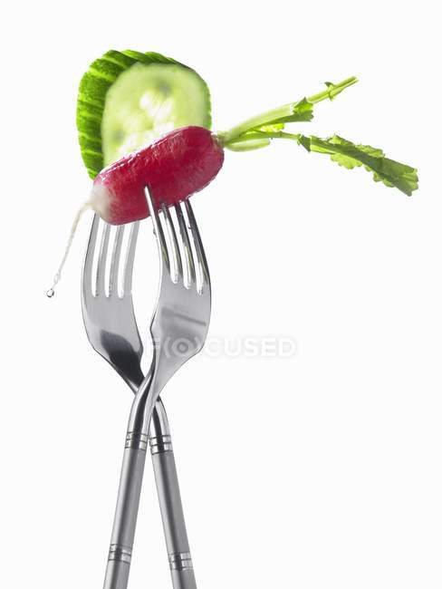 Forks with radish and cucumber — Stock Photo